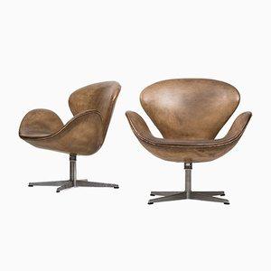 Modell 3320 Swan Armlehnstuhl von Arne Jacobsen für Fritz Hansen, 1969