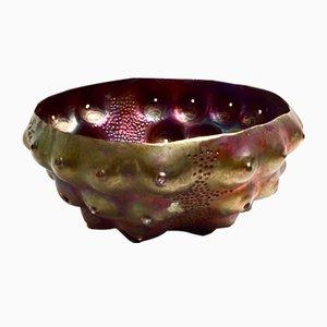 Cuenco Sea Urchin de Katie Watson