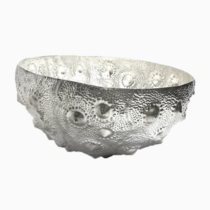Large Sea Urchin Bowl from Katie Watson