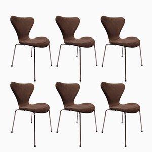Sillas modelo 3107 Seven de Arne Jacobsen para Fritz Hansen, 1967. Juego de 6