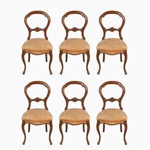 Sorrento Stühle aus Nussholz im barocken Stil, 1920er, 6er Set