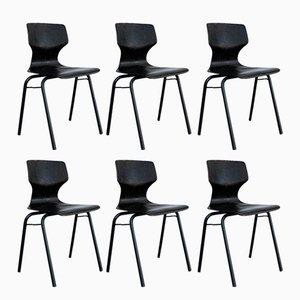 Industrielle Mid-Century Stühle aus gebogenem Holz von Adam Stegner für Pagholz Flöttoto, 1971, 6er Set
