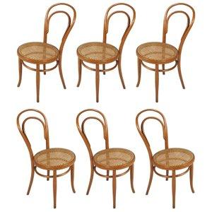 Modell 14 Stühle von Thonet, 1930er, 6er Set
