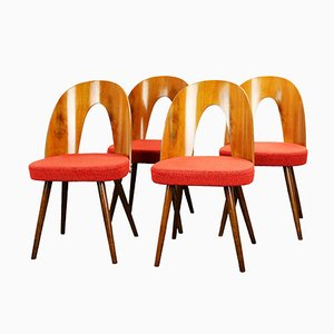 Mid-Century Dining Chairs by Antonín Šuman for Tatra, 1960s, Set of 4
