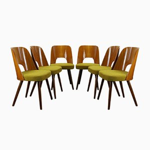 Mid-Century Dining Chairs by Oswald Haerdtl for Ton, 1950s, Set of 6