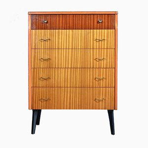 Mid-Century Teak & Walnut Chest of Drawers