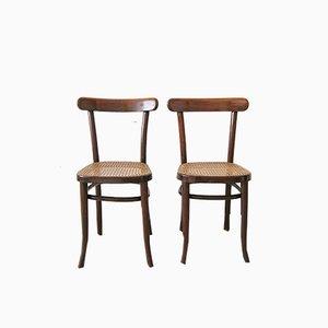 Vintage Holzstühle von Thonet, 2er Set