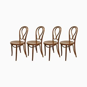 Romanian Bentwood Chairs, 1960s, Set of 4