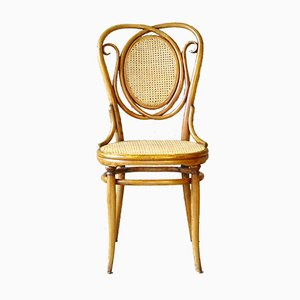 Chaise N ° 22 Antique en Rotin de Gebrüder Thonet Vienna GmbH, 1900s