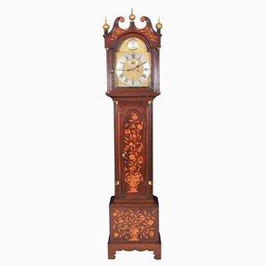 Reloj alargado holandés de marquetería, siglo XVIII