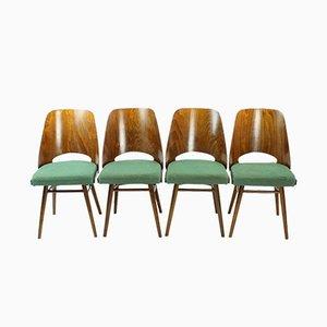 Tschechische Mid-Century Stühle aus Nussholz von TON, 1960er, 4er Set