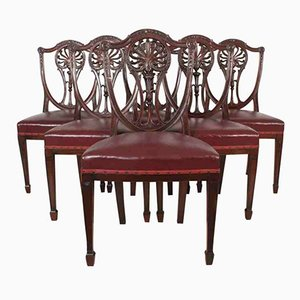Antique Mahogany Hepplewhite Dining Chairs, Set of 6