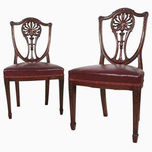 Antique Mahogany Hepplewhite Chairs, Set of 2