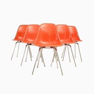 DSX Chairs von Charles & Ray Eames, 1960er, 6er Set