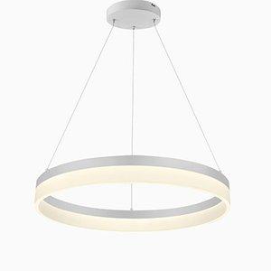 Lampada da soffitto Ring O'Lite di Mbe Design per Mimax Lighting S.L., 2019