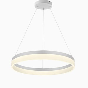 Ring O'Lite Ceiling Lamp by Mbe Design for Mimaxlighting S.L., 2019