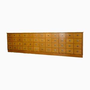 Mid-Century German Oak Pharmacists Cabinet, 1950s