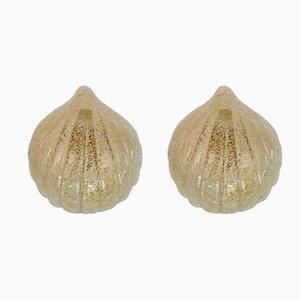 Murano Glass Shell Wall Lights, 1970s, Set of 2