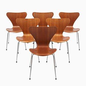 Chaises Papillon Modèle 3107 en Chêne Contreplaqué par Arne Jacobsen pour Fritz Hansen, 1968, Set de 6