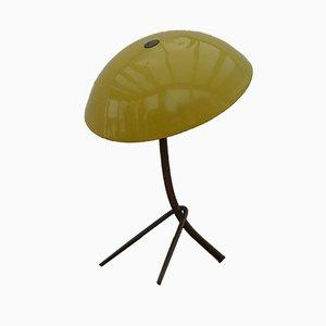 Lámpara de mesa vintage de Arredoluce, años 50