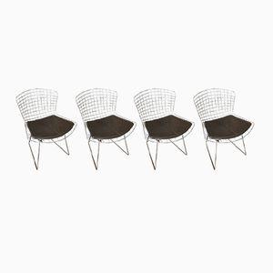 Braune Stühle von Harry Bertoia für Knoll International, 1980er, 4er Set