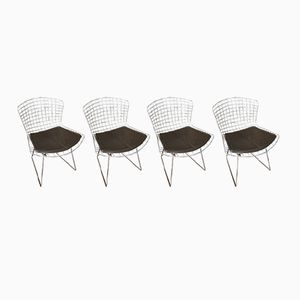 Chaises d'Appoint Marron par Harry Bertoia pour Knoll International, 1980s, Set de 4