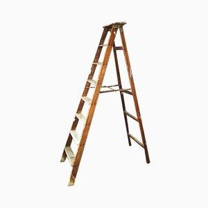 Escalera de pintor plegable de madera, años 60