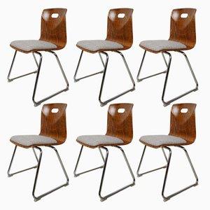 Chaises de Salle à Manger Vintage par Adam Stegner pour Pagholz FLötotto, 1950s, Set de 6