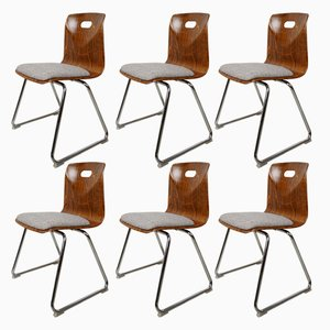 Vintage Dining Chairs by Adam Stegner for Pagholz FLötotto, 1950s, Set of 6