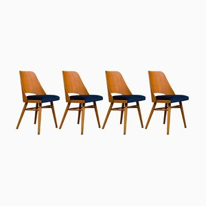 Esszimmerstühle von Radomir Hofman für TON, 1960er, 6er Set