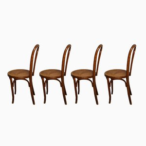Bistro Chairs by Walter Baumann, 1920s, Set of 4