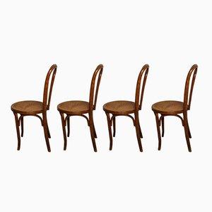 Bistro Stühle von Walter Baumann, 1920er, 4er Set