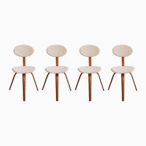 Nr. 3 Stühle aus Bugholz von Steiner, 1950er, 4er Set