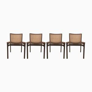 Italienische Esszimmerstühle von Tito Agnoli für La Linea, 1960er, 4er Set