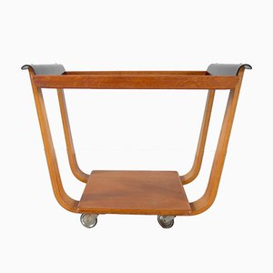 Plywood Trolley by Cees Braakman for UMS Pastoe, 1950s