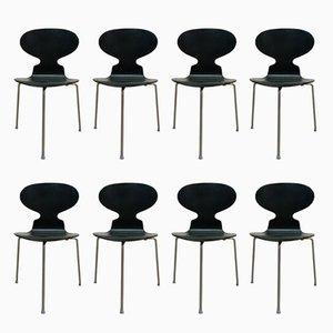 Sillas Ant vintage de Arne Jacobsen para Fritz Hansen. Juego de 8