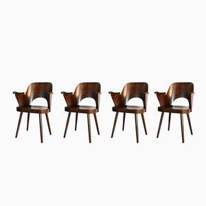 Nr 1515 Esszimmerstühle aus Nussholz von Oswald Haerdtl für TON, 1950er, 4er Set
