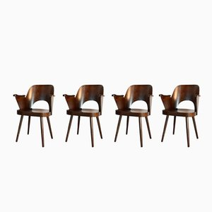 Walnut Nr 1515 Dining Chairs by Oswald Haerdtl for TON, 1950s, Set of 4