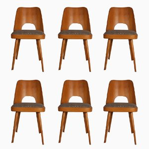 Beech & Fabric Model 515 Chairs by Oswald Haerdtl for TON, 1955, Set of 6