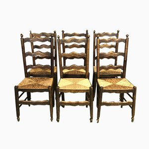 Rustic Beech Chairs, 1950s, Set of 6