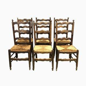 Sedie rustiche in faggio, anni '50, set di 6