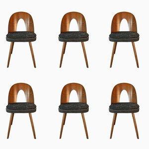 Chaises de Salle à Manger en Noyer et Tissu par Antonin Suman pour MIER, 1960s, Set de 6