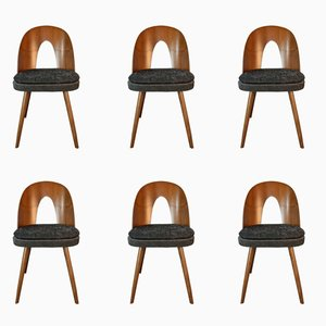 Walnut & Fabric Dining Chairs by Antonin Suman for MIER, 1960s, Set of 6
