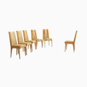 Chaises de Salle à Manger Mid-Century en Érable par Vittorio Dassi, Set de 6