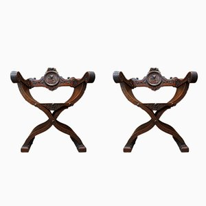 19th Century Walnut Dagobert Armchairs, Set of 2