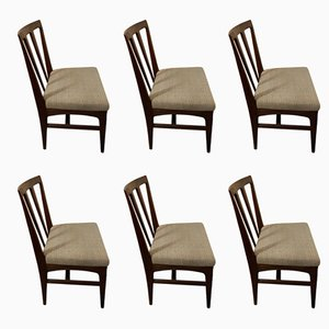 Dining Chairs from Younger Ltd., 1970s, Set of 6