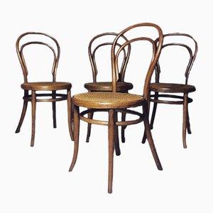 Modell 14 Esszimmerstühle von Michael Thonet, 1890er, 4er Set