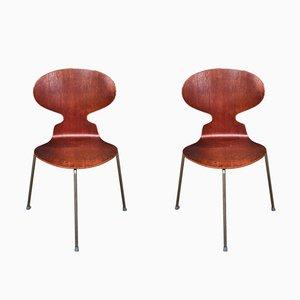 Sillas Ant con tres patas de Arne Jacobsen para Fritz Hansen, años 60. Juego de 2
