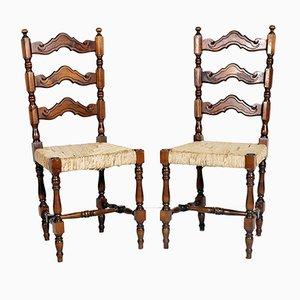 Esszimmerstühle von Dini & Puccini, 1950er, 2er Set