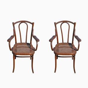 Sedie antiche in faggio di Thonet, set di 2